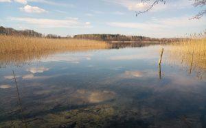Parsteinsee Brodowin Biosphärenreservat Herbst